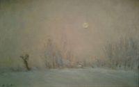 'Sole pallido invernale'